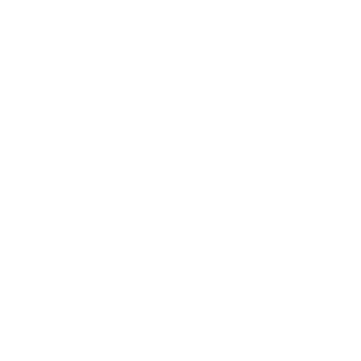 BairesDev - Travel & Relocation Icon